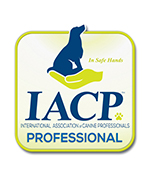 iacp dog trainer certified